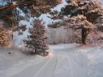 Зимняя сказка. Автор Немченко Ефросиния
